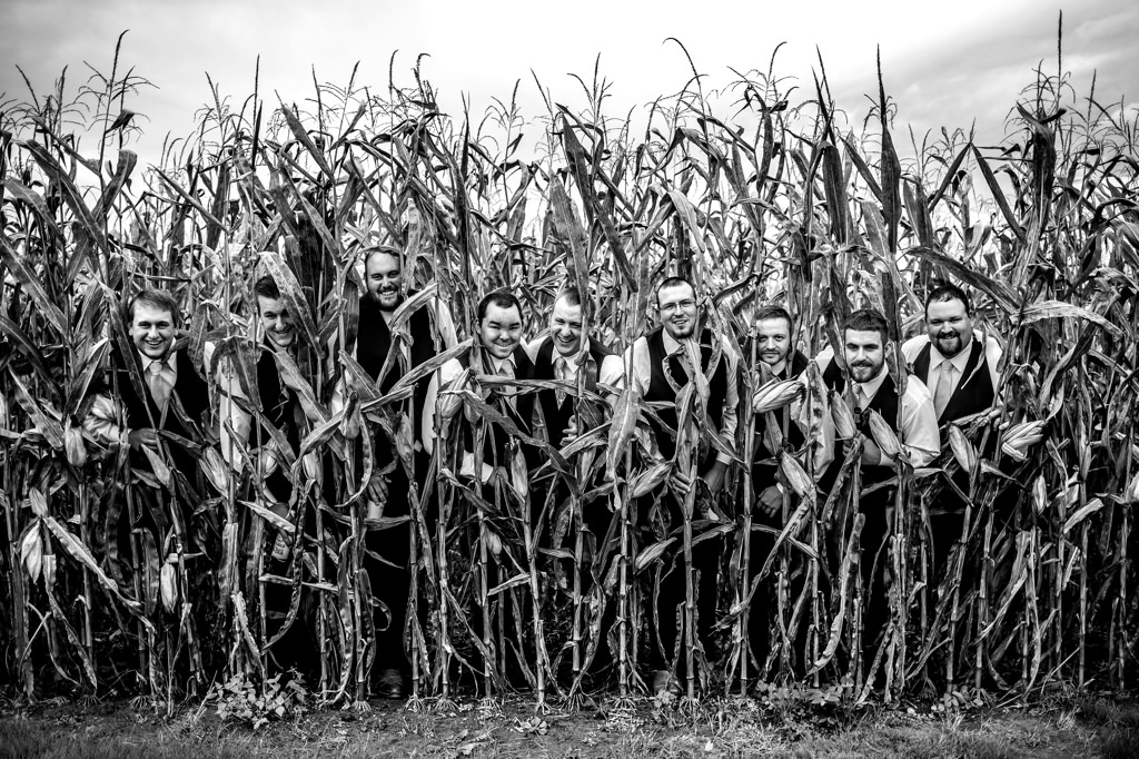 corn field harvest view barn wedding